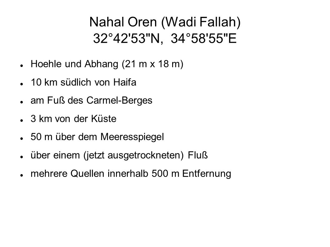 Nahal Oren (Wadi Fallah) 32°42 53 N, 34°58 55 E