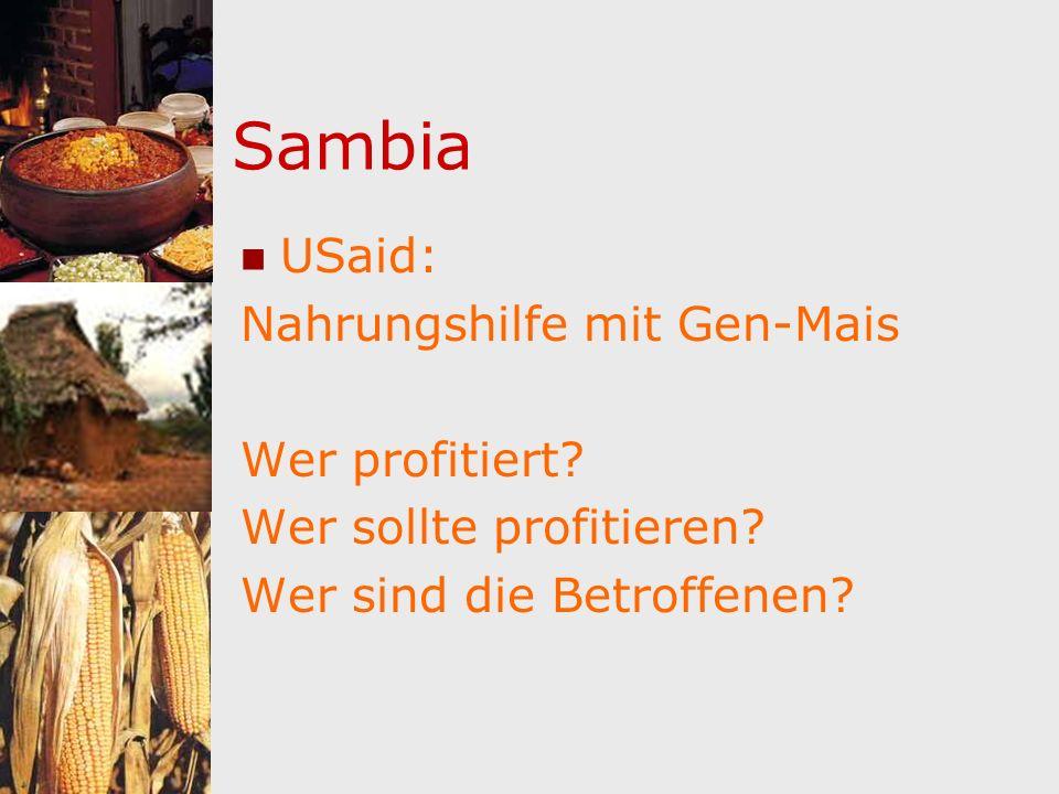 Sambia USaid: Nahrungshilfe mit Gen-Mais Wer profitiert