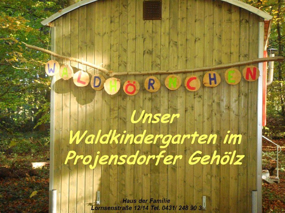 Unser Waldkindergarten im Projensdorfer Gehölz