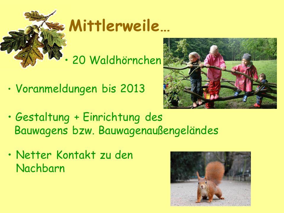 Mittlerweile… 20 Waldhörnchen Gestaltung + Einrichtung des