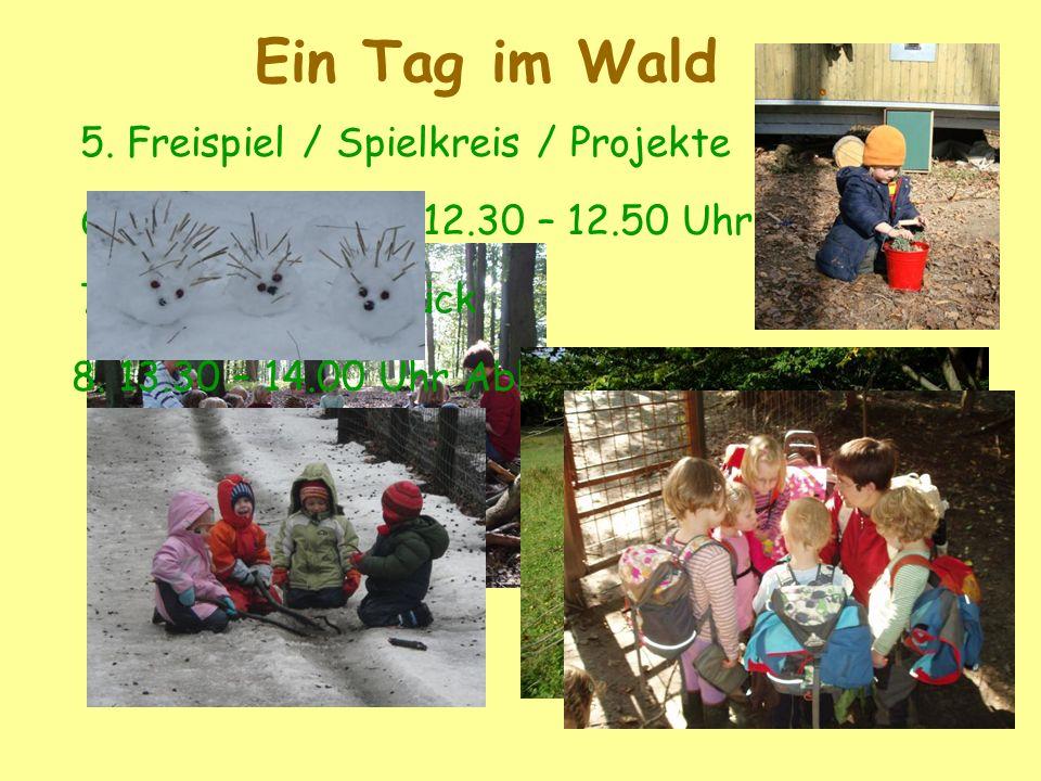 Ein Tag im Wald 5. Freispiel / Spielkreis / Projekte