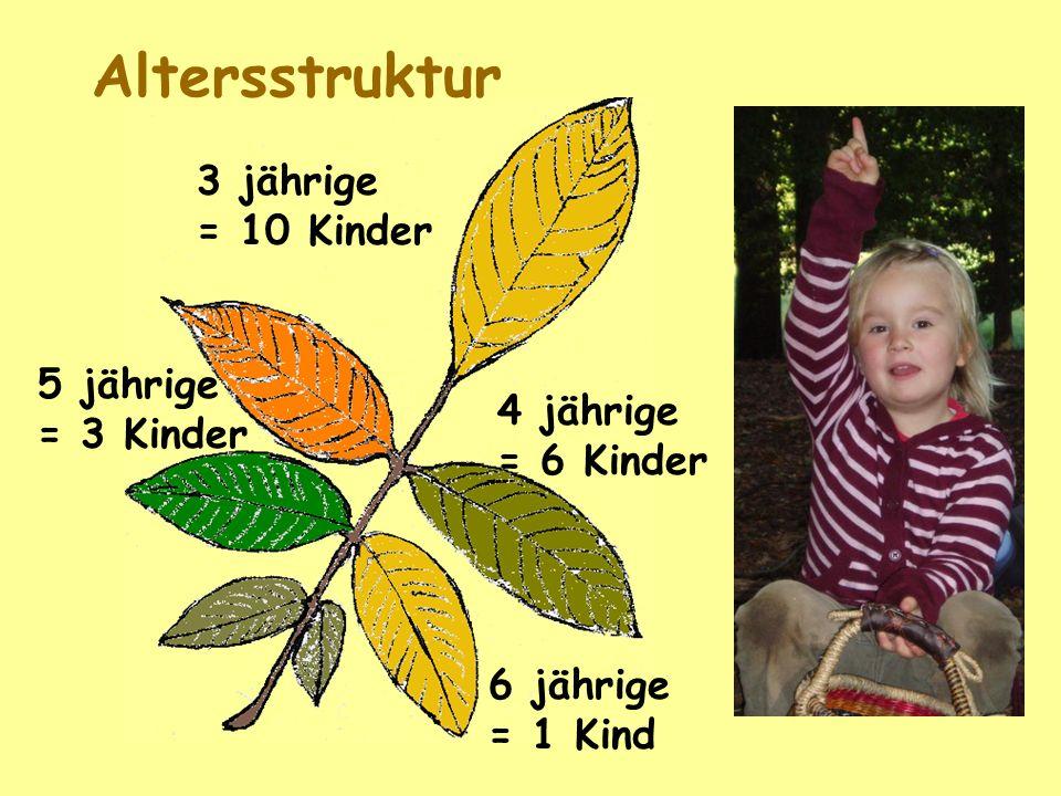Altersstruktur 3 jährige = 10 Kinder 5 jährige = 3 Kinder