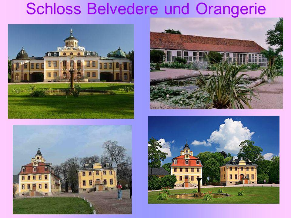 Schloss Belvedere und Orangerie