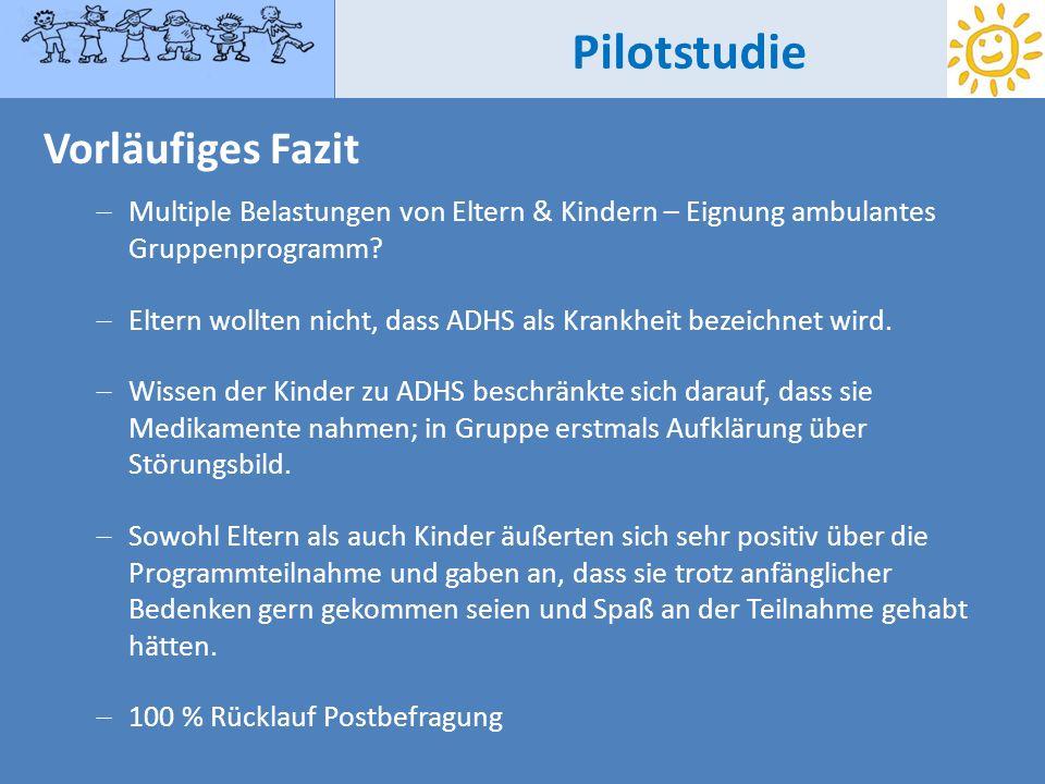 Pilotstudie Vorläufiges Fazit