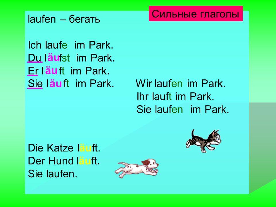 Сильные глаголы laufen – бегать. Ich laufe im Park. Du l fst im Park. Er l ft im Park.