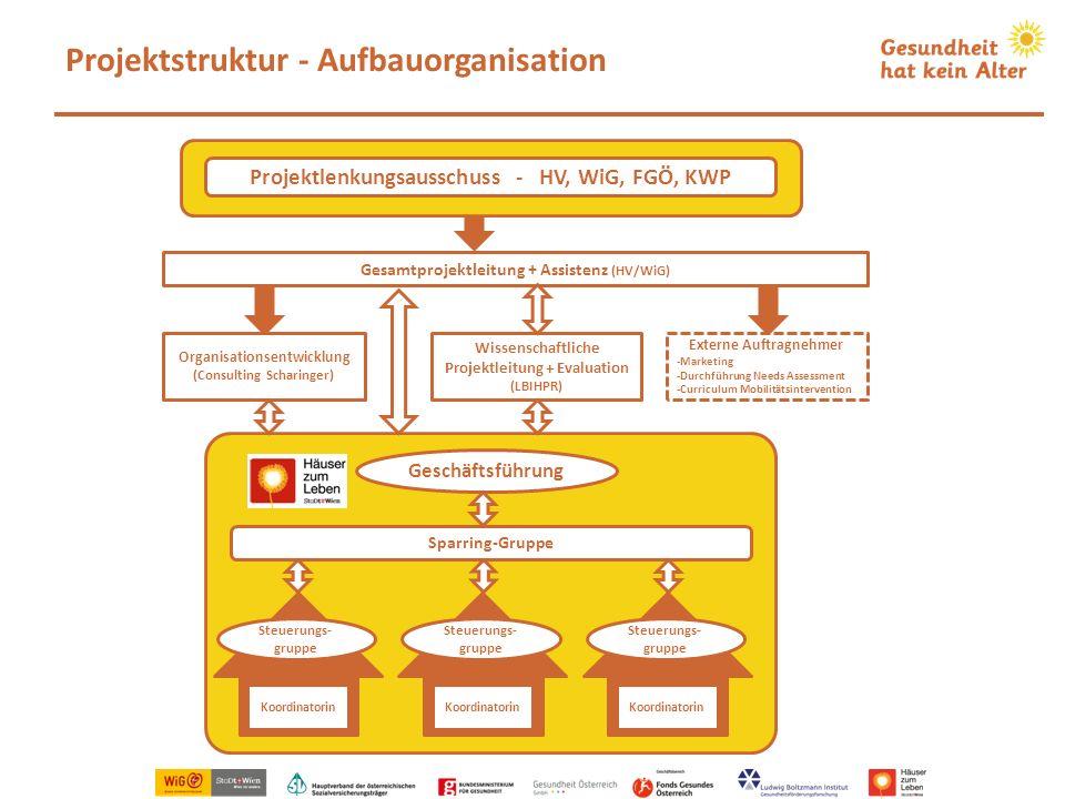 Projektstruktur - Aufbauorganisation