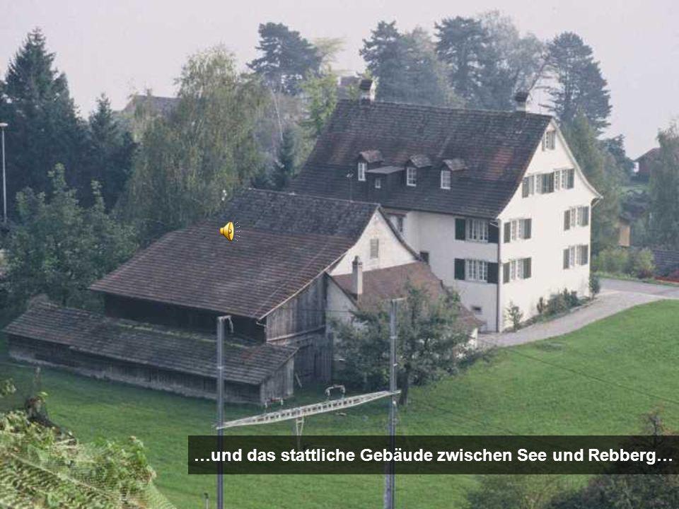 …und das stattliche Gebäude zwischen See und Rebberg…