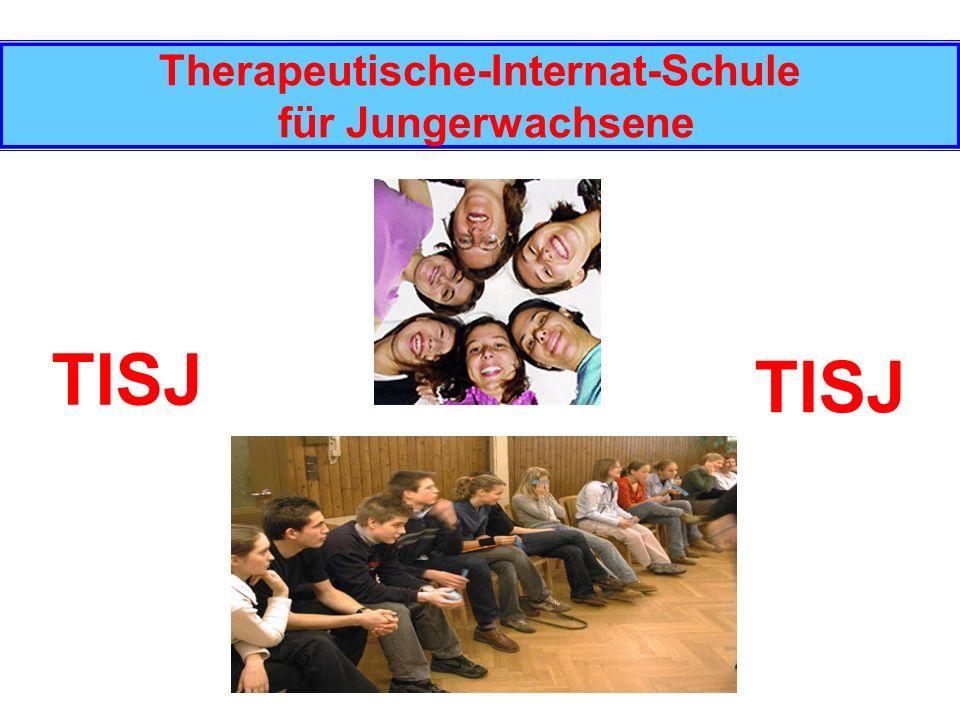 Therapeutische-Internat-Schule für Jungerwachsene