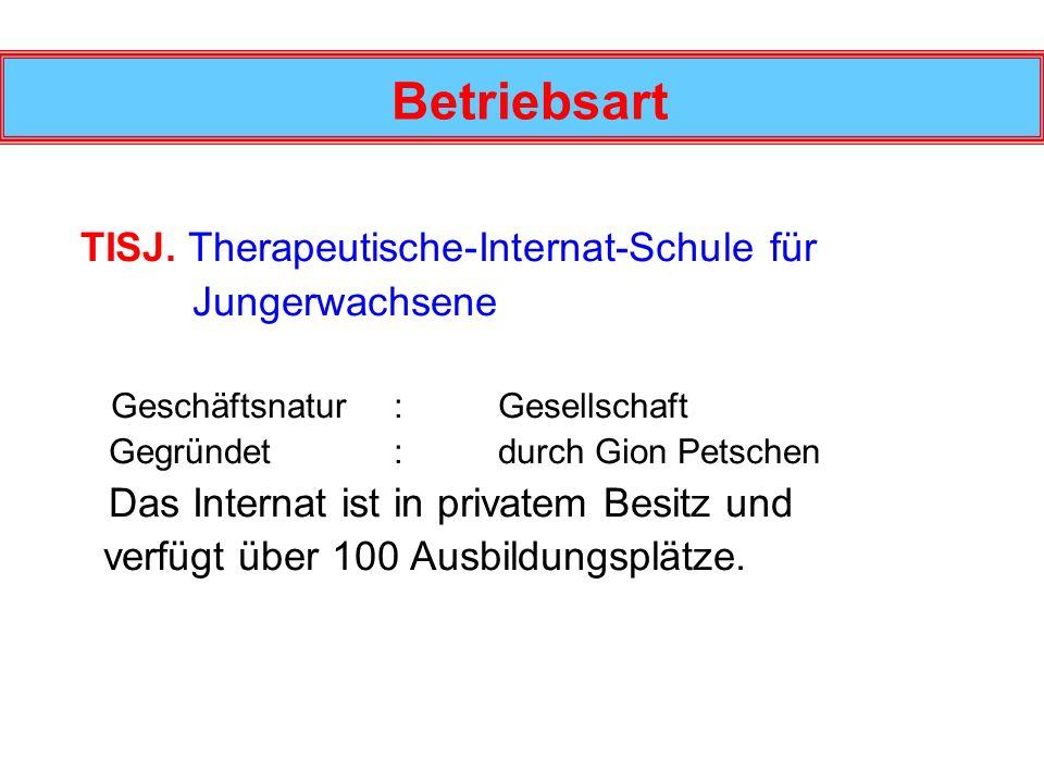 Betriebsart TISJ. Therapeutische-Internat-Schule für Jungerwachsene