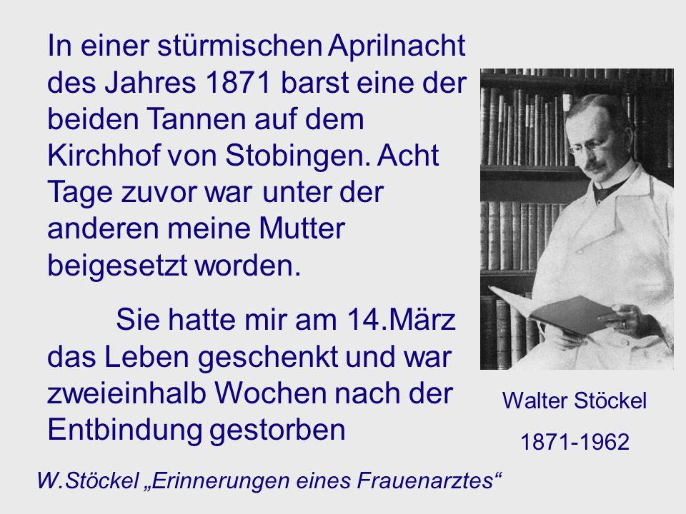 In einer stürmischen Aprilnacht des Jahres 1871 barst eine der beiden Tannen auf dem Kirchhof von Stobingen. Acht Tage zuvor war unter der anderen meine Mutter beigesetzt worden.