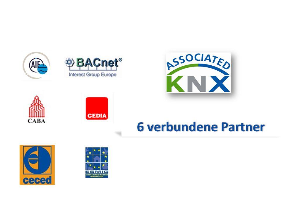6 verbundene Partner
