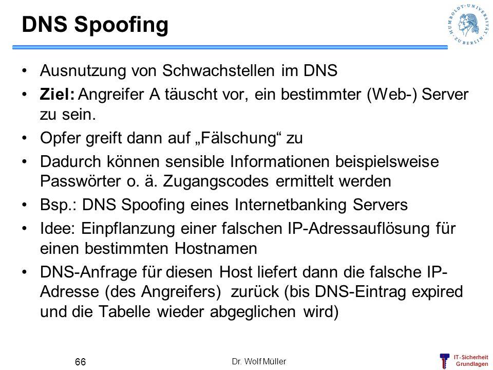 DNS Spoofing Ausnutzung von Schwachstellen im DNS