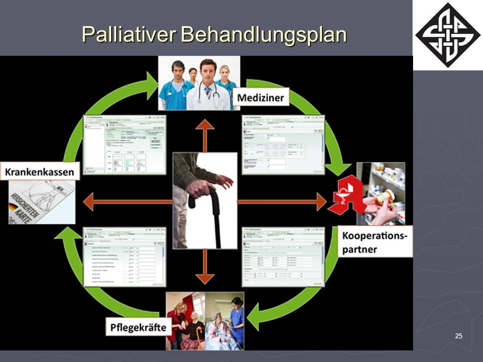 Palliativer Behandlungsplan