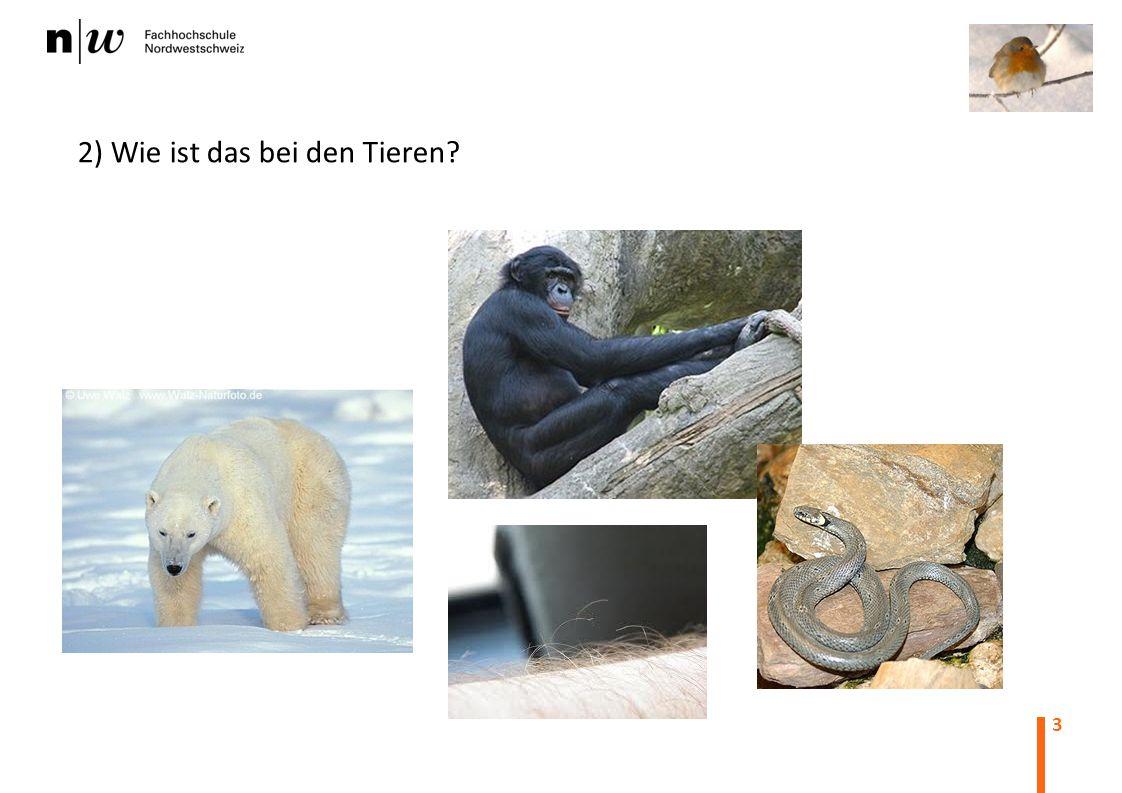 2) Wie ist das bei den Tieren