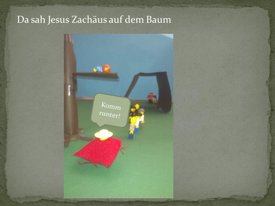 Da sah Jesus Zachäus auf dem Baum