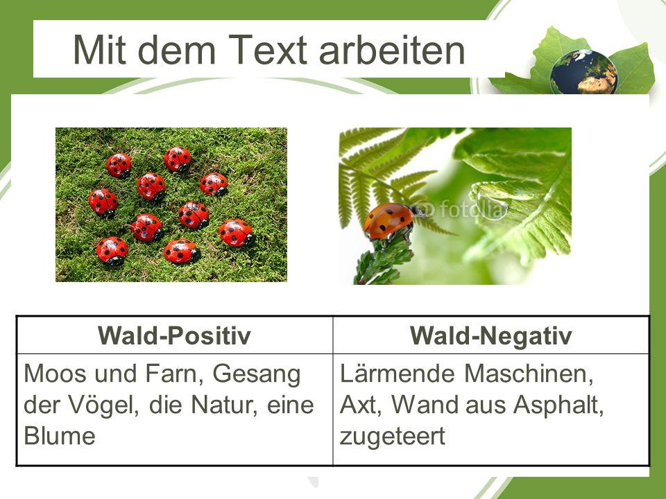 Mit dem Text arbeiten Wald-Positiv Wald-Negativ