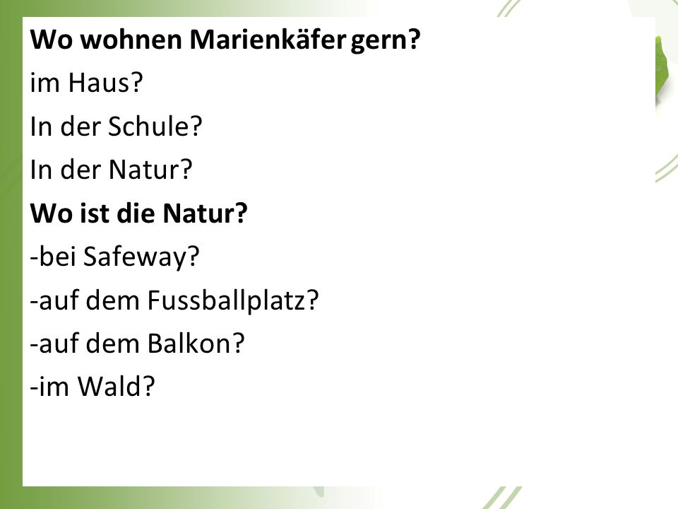 Wo wohnen Marienkäfer gern. im Haus. In der Schule. In der Natur