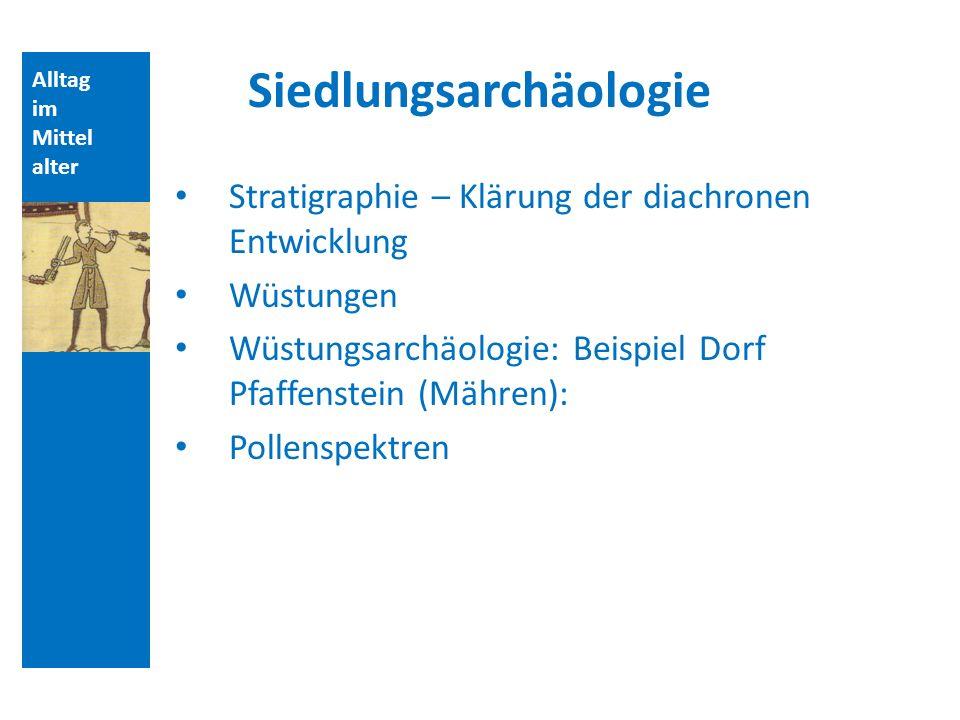 Siedlungsarchäologie