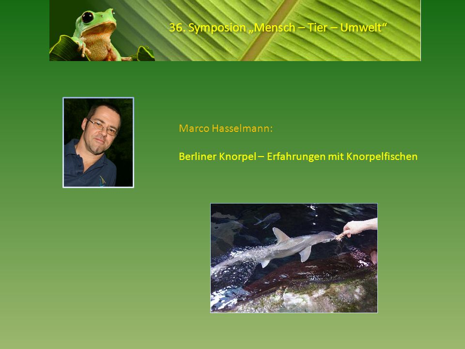 """36. Symposion """"Mensch – Tier – Umwelt"""