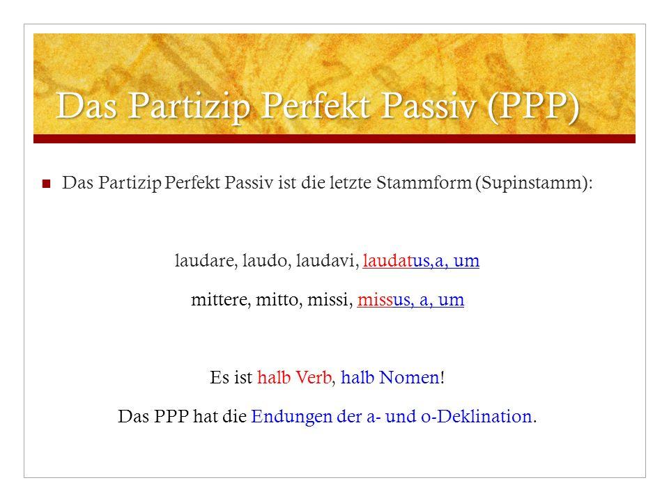 Das Partizip Perfekt Passiv (PPP)