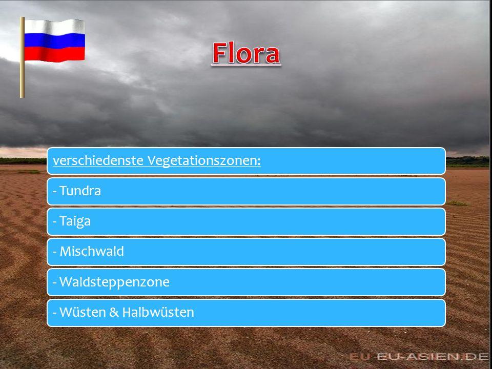 Flora verschiedenste Vegetationszonen: - Tundra - Taiga - Mischwald