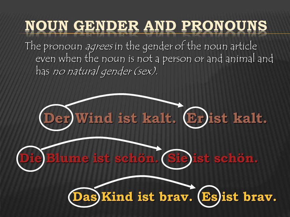 Noun Gender and Pronouns