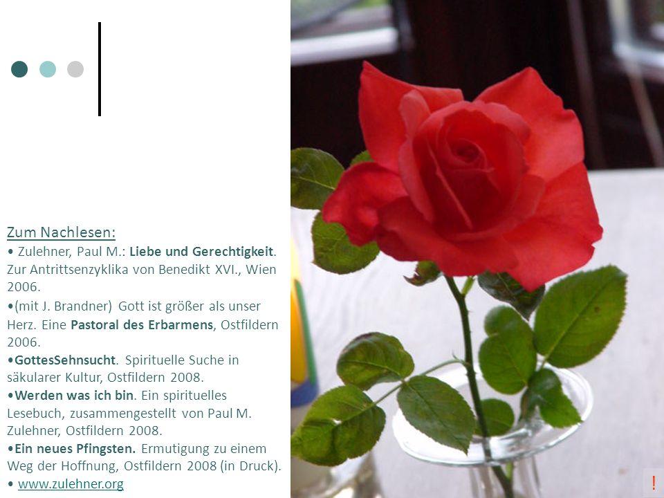 Zum Nachlesen: Zulehner, Paul M.: Liebe und Gerechtigkeit. Zur Antrittsenzyklika von Benedikt XVI., Wien 2006.