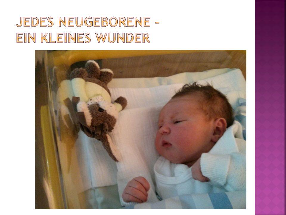 Jedes Neugeborene – ein kleines Wunder