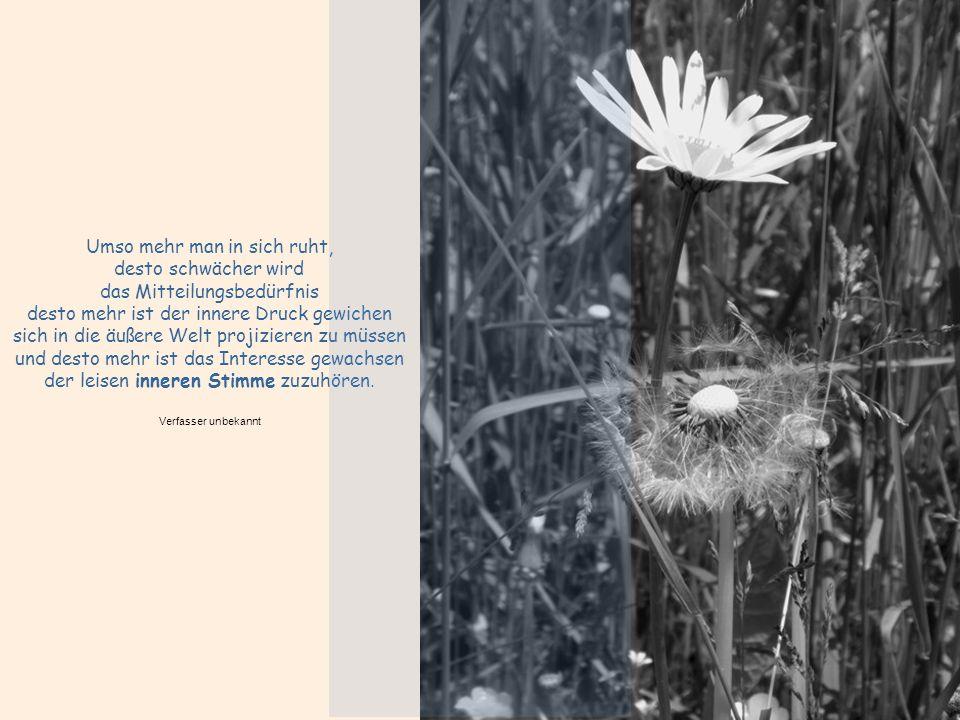 Umso mehr man in sich ruht, desto schwächer wird das Mitteilungsbedürfnis desto mehr ist der innere Druck gewichen sich in die äußere Welt projizieren zu müssen und desto mehr ist das Interesse gewachsen der leisen inneren Stimme zuzuhören.