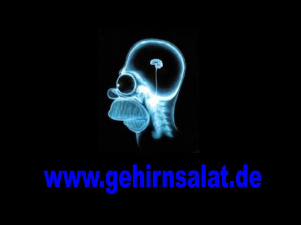 www.gehirnsalat.de