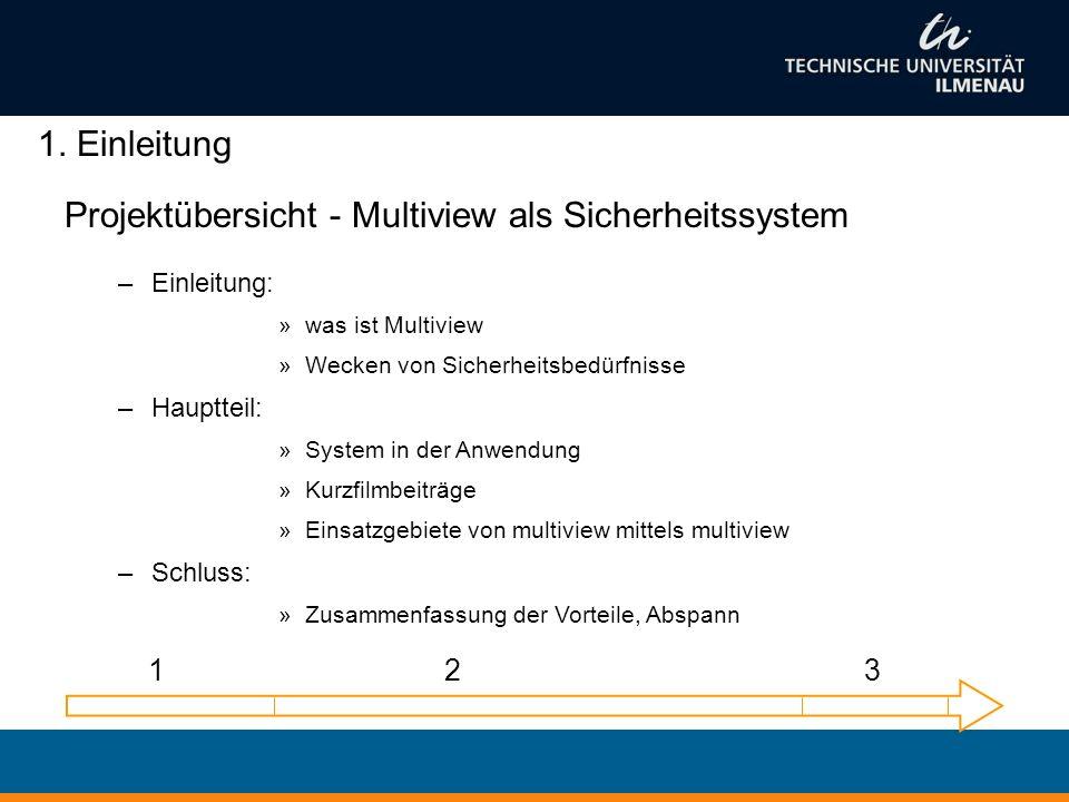 Projektübersicht - Multiview als Sicherheitssystem