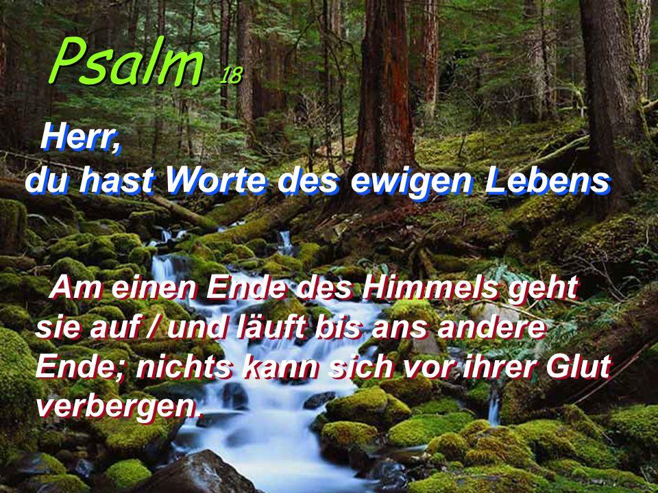 Psalm 18 Herr, du hast Worte des ewigen Lebens