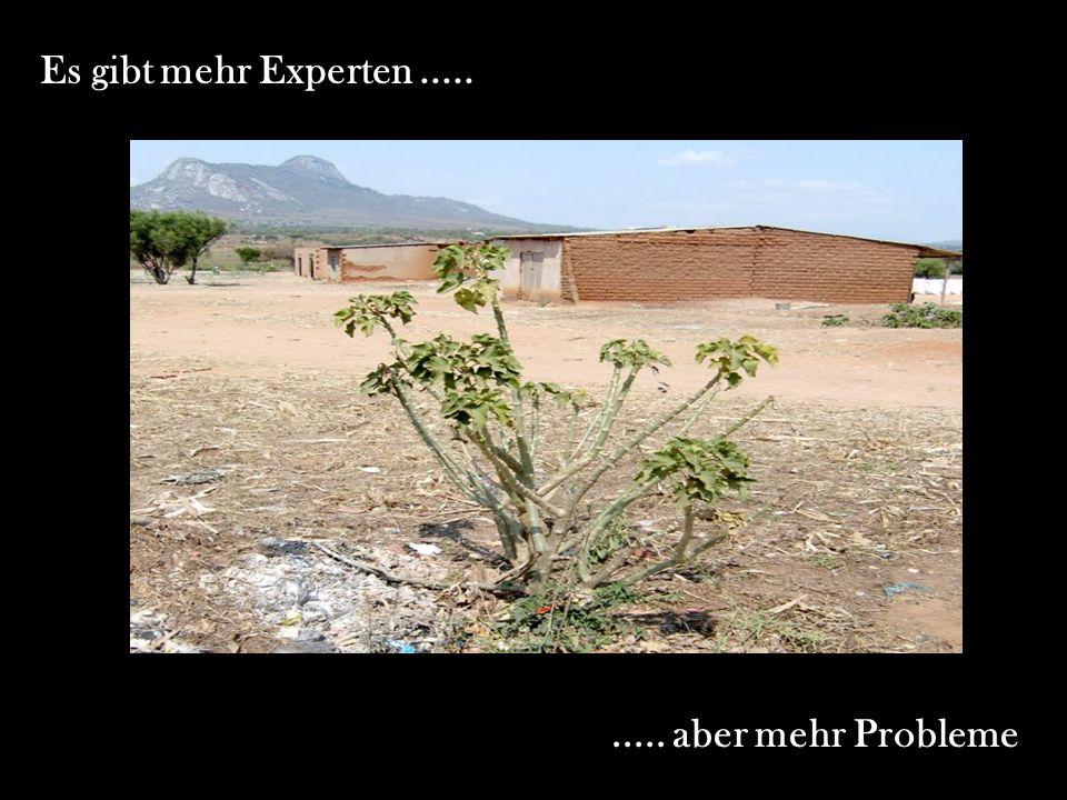 Es gibt mehr Experten ..... ..... aber mehr Probleme