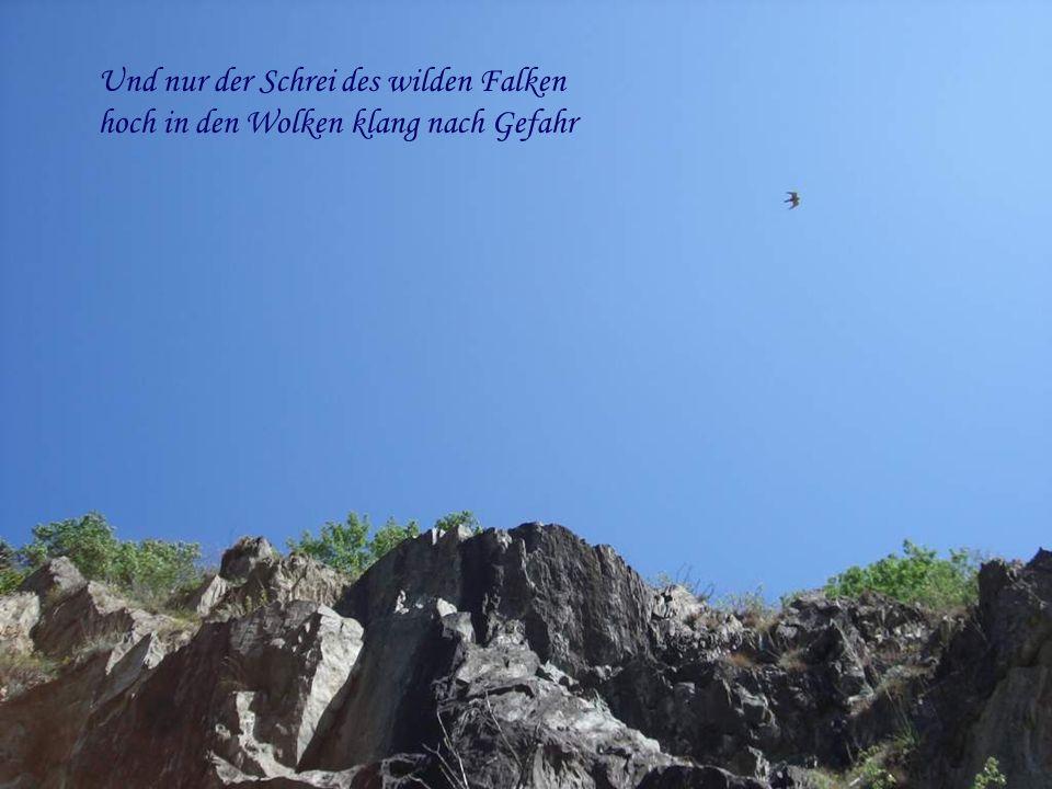Und nur der Schrei des wilden Falken hoch in den Wolken klang nach Gefahr