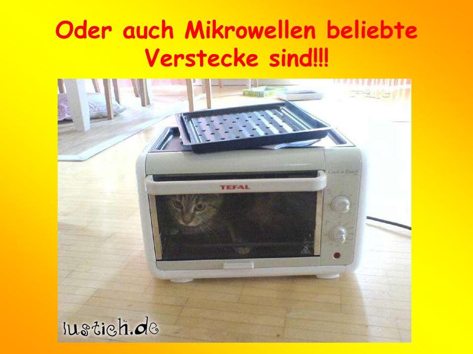 Oder auch Mikrowellen beliebte Verstecke sind!!!
