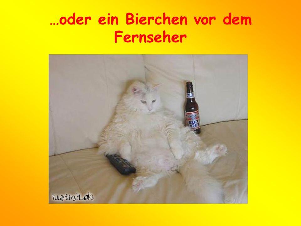…oder ein Bierchen vor dem Fernseher