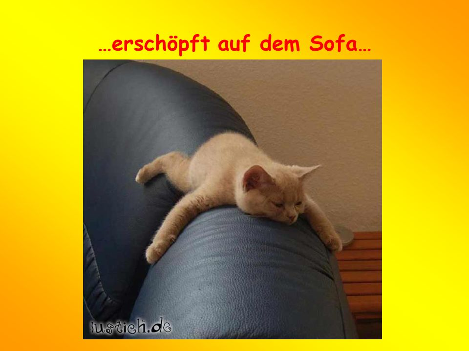 …erschöpft auf dem Sofa…