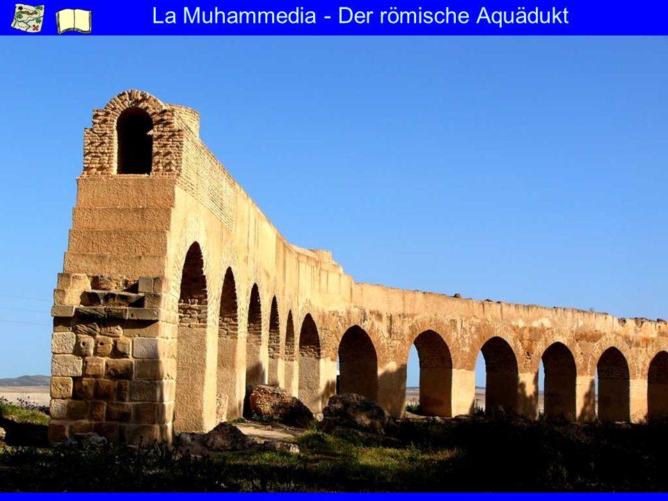 La Muhammedia - Der römische Aquädukt