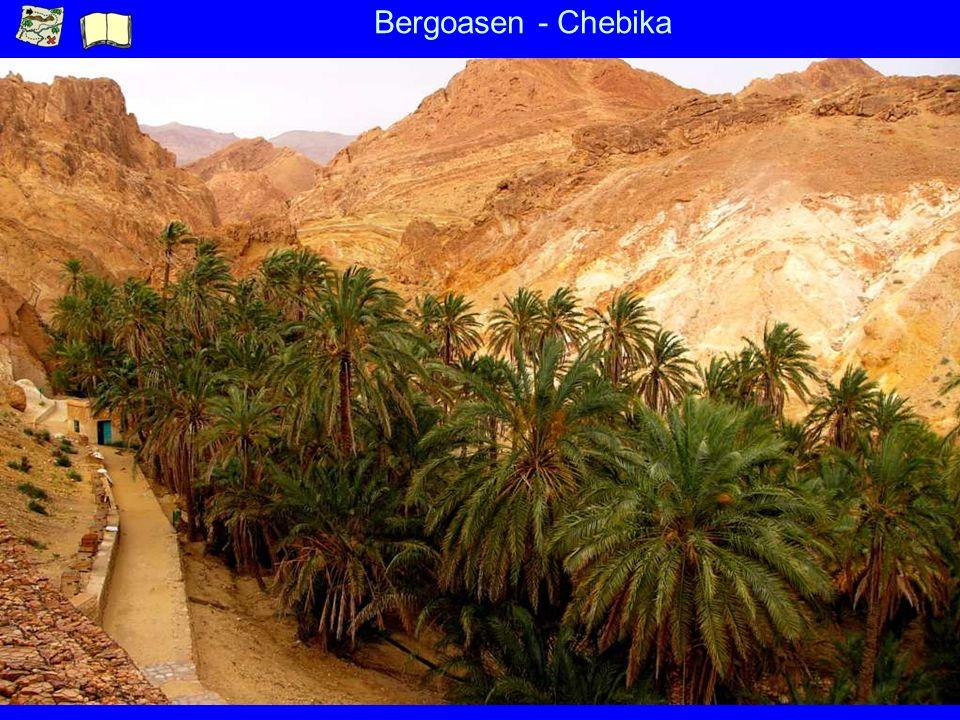 Bergoasen - Chebika