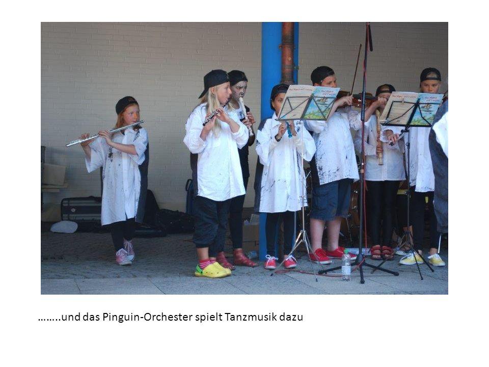 ……..und das Pinguin-Orchester spielt Tanzmusik dazu