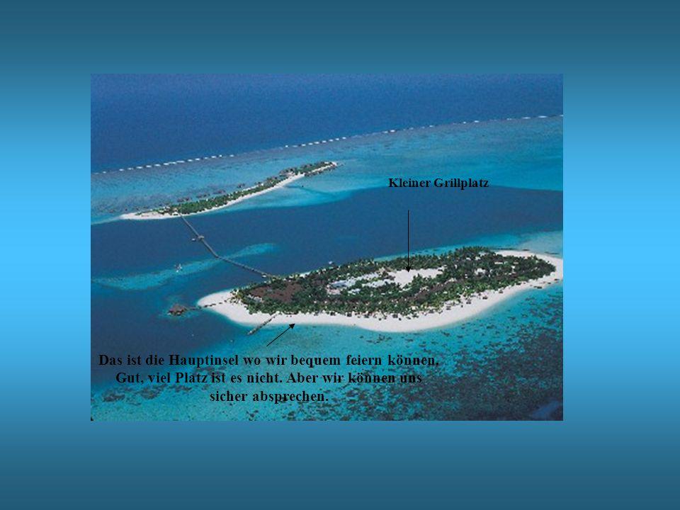 Kleiner GrillplatzDas ist die Hauptinsel wo wir bequem feiern können.