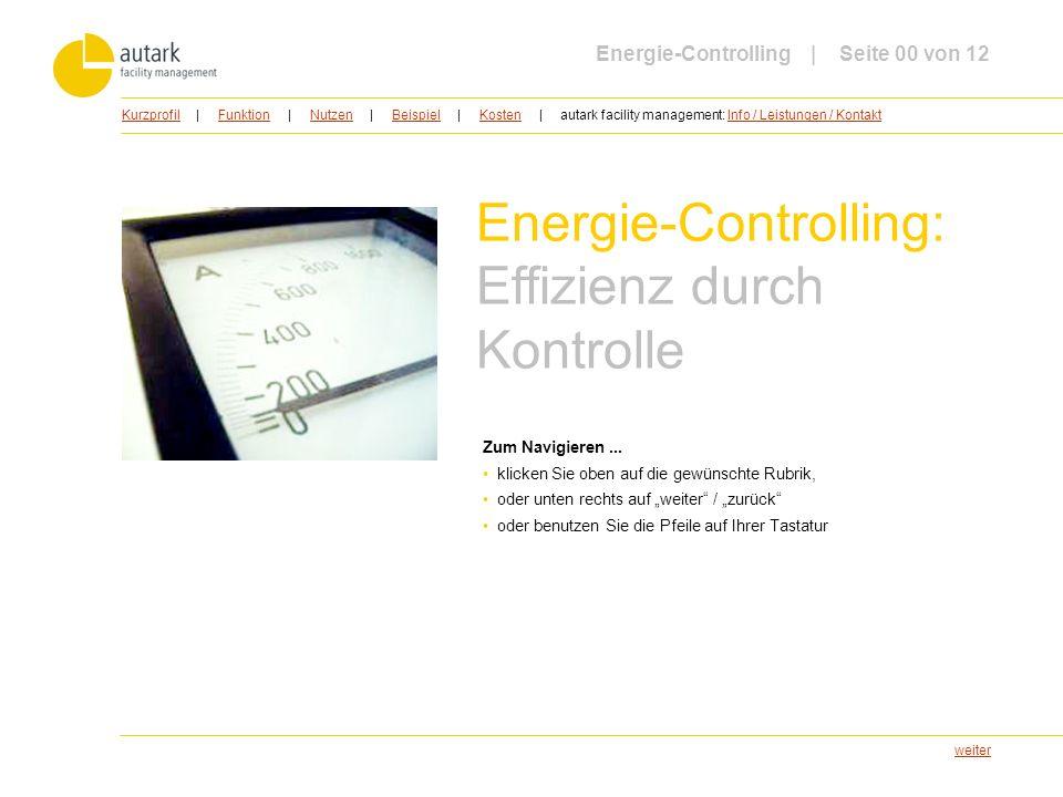 Energie-Controlling: Effizienz durch Kontrolle