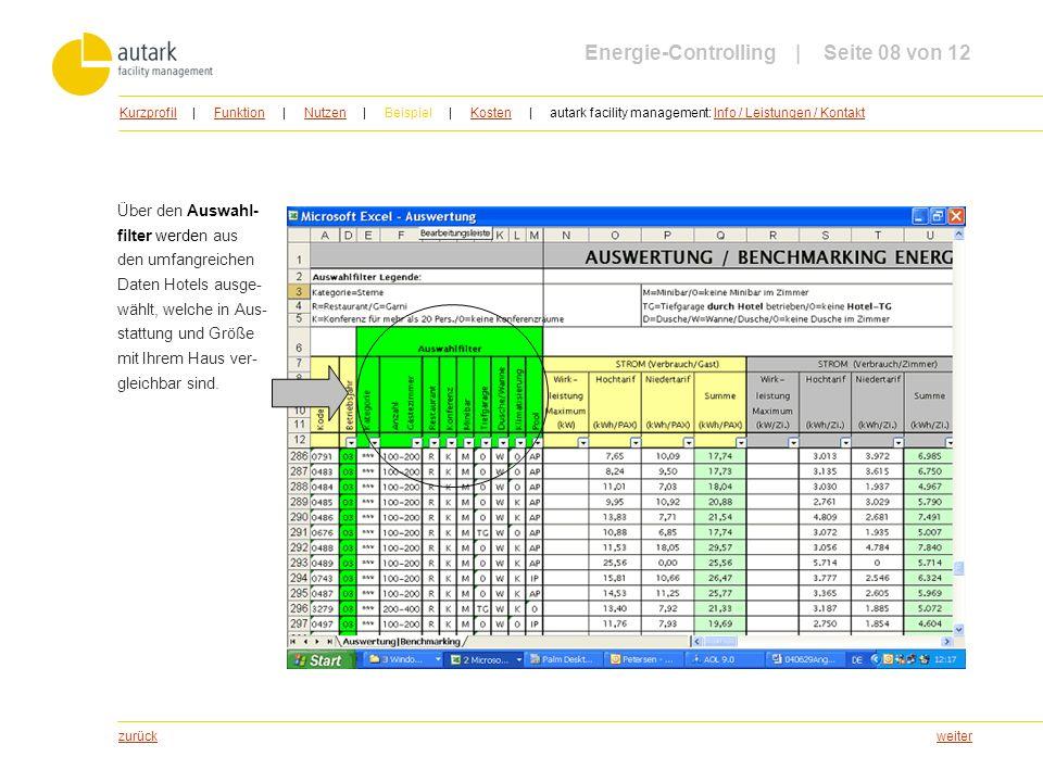 Energie-Controlling | Seite 08 von 12