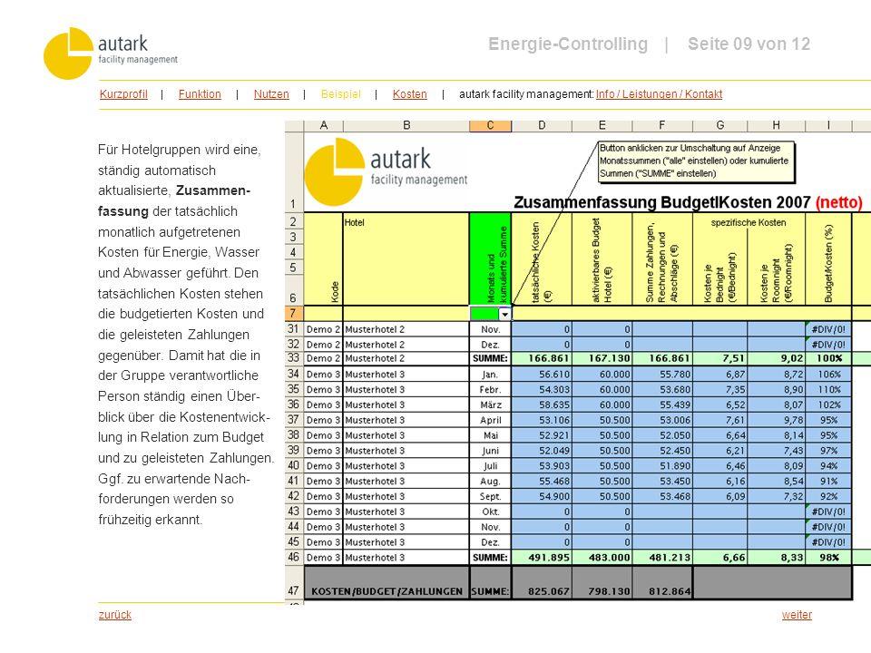 Energie-Controlling | Seite 09 von 12