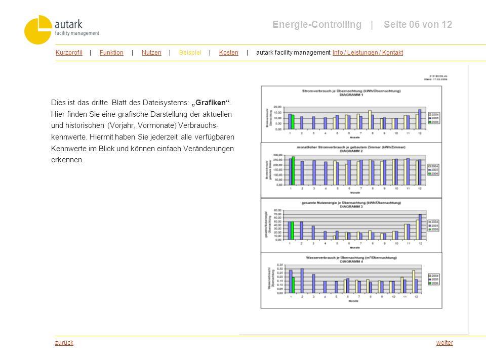 Energie-Controlling | Seite 06 von 12