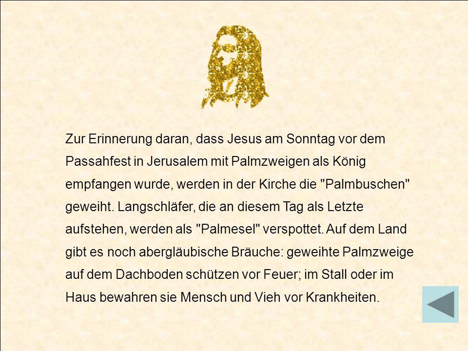 Zur Erinnerung daran, dass Jesus am Sonntag vor dem Passahfest in Jerusalem mit Palmzweigen als König empfangen wurde, werden in der Kirche die Palmbuschen geweiht.