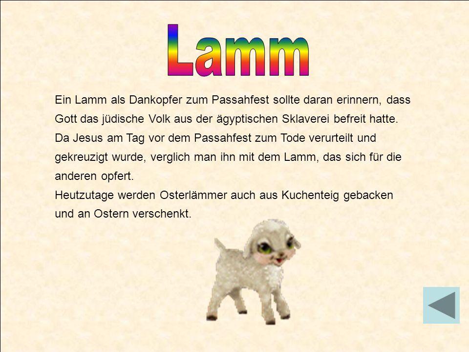 Lamm Ein Lamm als Dankopfer zum Passahfest sollte daran erinnern, dass Gott das jüdische Volk aus der ägyptischen Sklaverei befreit hatte.