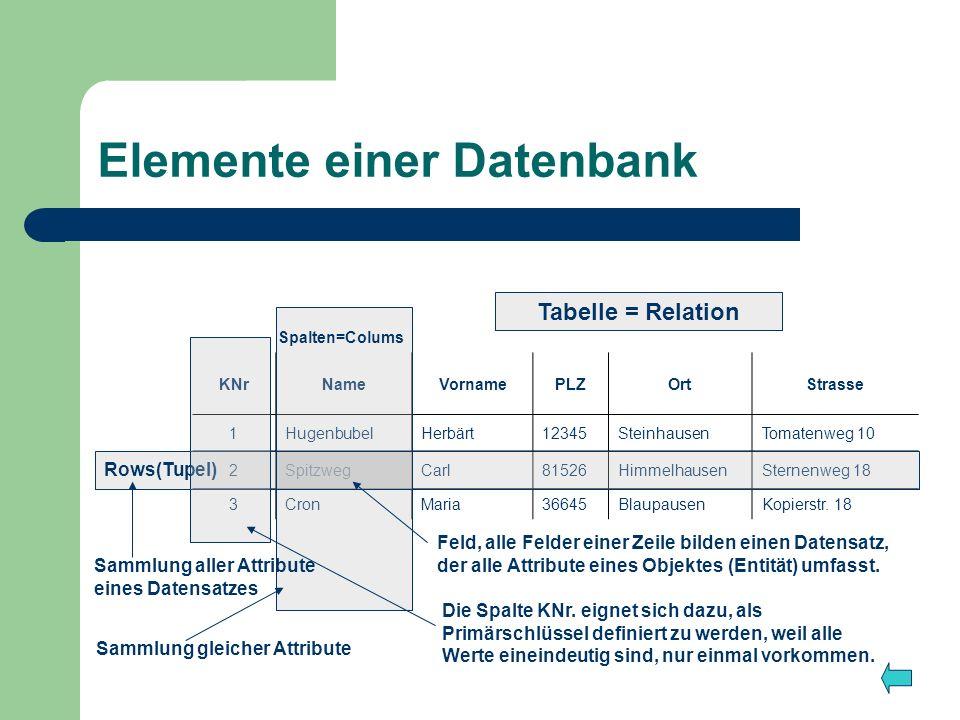 Elemente einer Datenbank