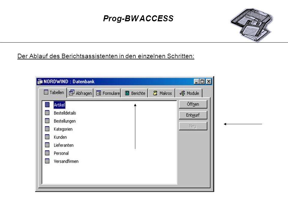 Prog-BW ACCESS Der Ablauf des Berichtsassistenten in den einzelnen Schritten: