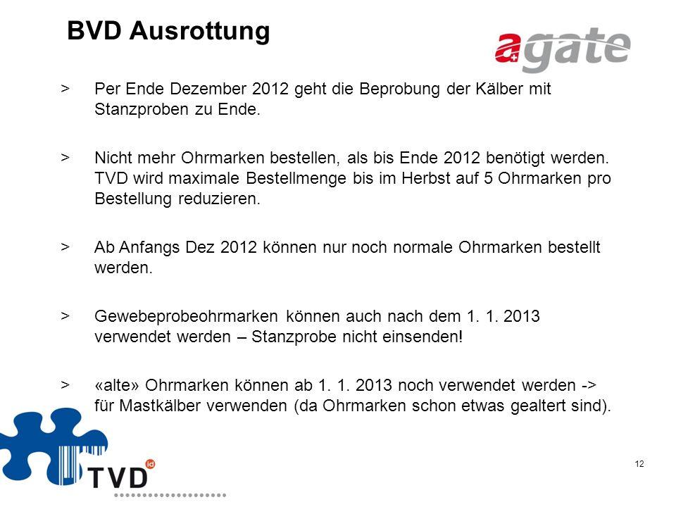 BVD Ausrottung Per Ende Dezember 2012 geht die Beprobung der Kälber mit Stanzproben zu Ende.